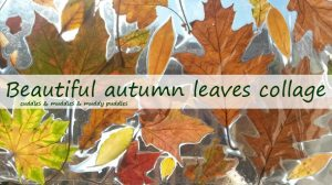 Beautiful autumn leaves collage