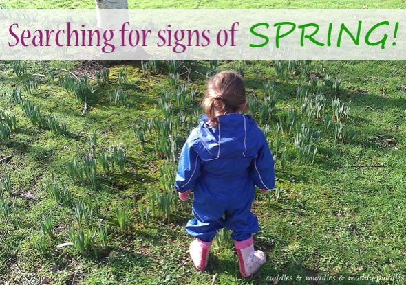Searching for signs of spring