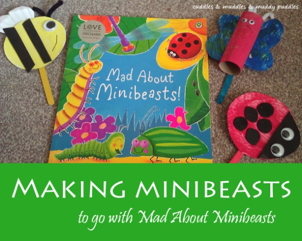 Making minibeasts to go with Mad About Minibeasts