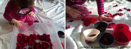 Rose petals sensory tub