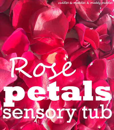 Gorgeous rose petals sensory tub