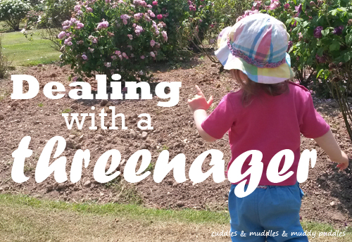 Dealing with a threenager