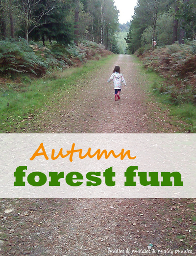 Autumn forest fun