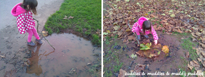 Puddles at the park