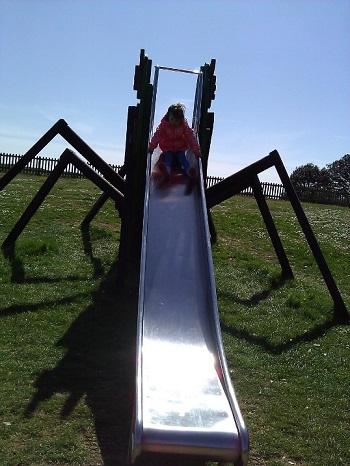 Wolf spider slide
